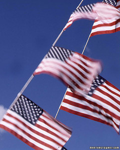 ft071_flags03_l.jpg