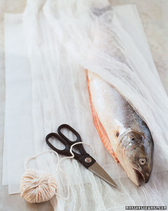 ft058_salmon03.jpg
