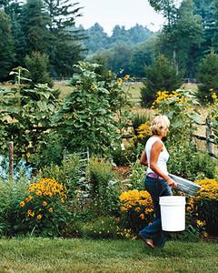 A Beginneru0027s Guide To Organic Gardening