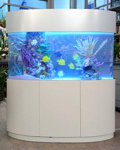 6135_041411_aquarium.jpg
