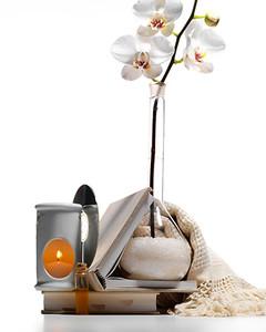 bd102575_1206_orchid.jpg