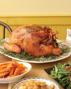 ed103255_1107_turkey.jpg
