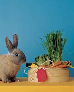 ka100418_hol03_bunny.jpg