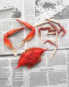 mld105528_0710_crab2.jpg