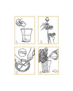 la_care_illustrations.jpg