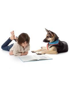 therapy-dog-mld107827.jpg