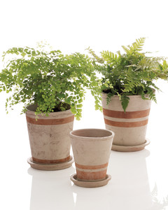 mld103020_0208_planter.jpg
