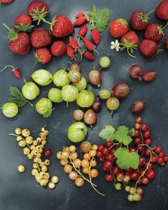 msl-berries-1-mld107637.jpg