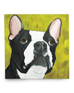 french-bulldog-mld109011.jpg