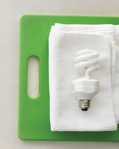 xd103796_spr08_lightbulb.jpg