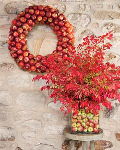 apple-wreath-1011mld106819.jpg