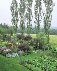 noble-garden-103-mld106284.jpg