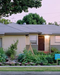 4123_031909_frontyardgarden.jpg