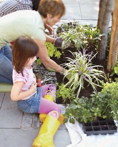 planting-beds-0411mbd106612.jpg