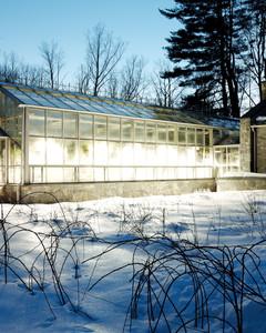 gardening-greenhouse-mld107179.jpg