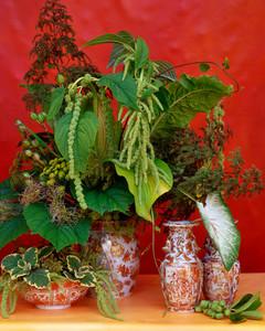 flower-arranging-la103516-green.jpg