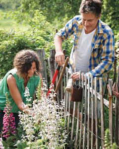 garden-party-working-1-md107635.jpg