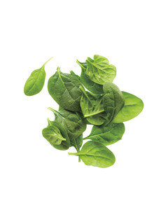 packaged-baby-spinach-med108372.jpg