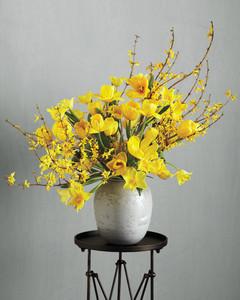 forsythia-yellow-flowers-mld107426.jpg