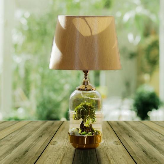 terrarium-lamp-garden