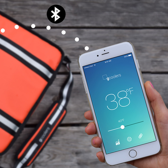 Gcooler bag and smart phone