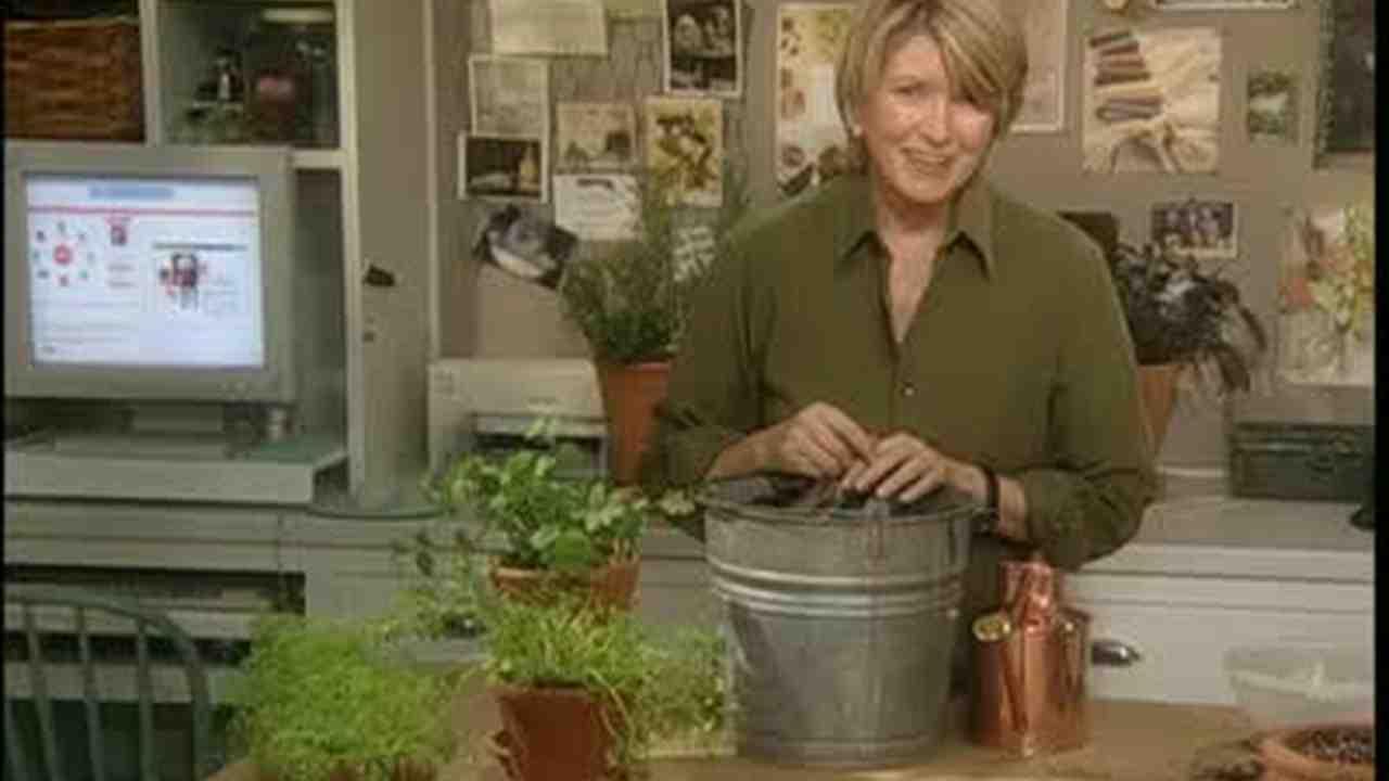 Kitchen Window Herb Garden Video Kitchen Window Herb Garden Martha Stewart