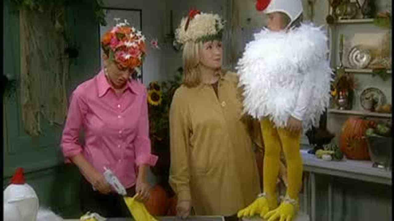 Video: Martha Stewart Makes a Halloween Chicken Costume   Martha ...