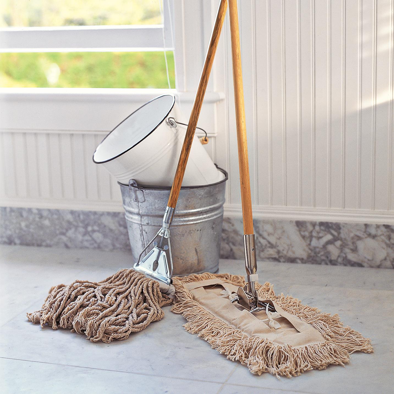 Diy Carpet Cleaners Martha Stewart