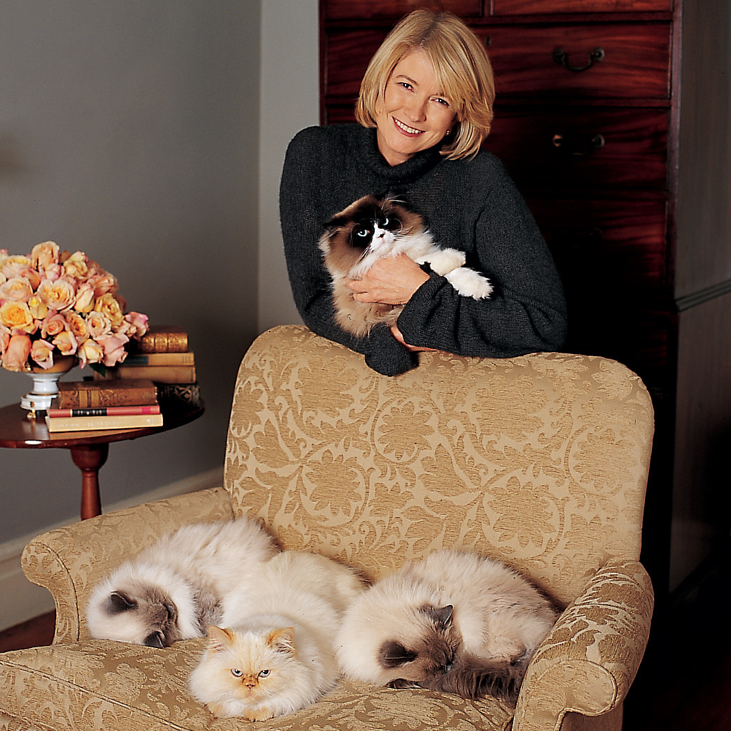 How To Remove Pet Hair From Upholstery Martha Stewart