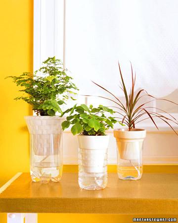 Plant Watering System Martha Stewart