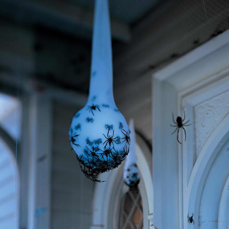Spider Egg Sac Martha Stewart