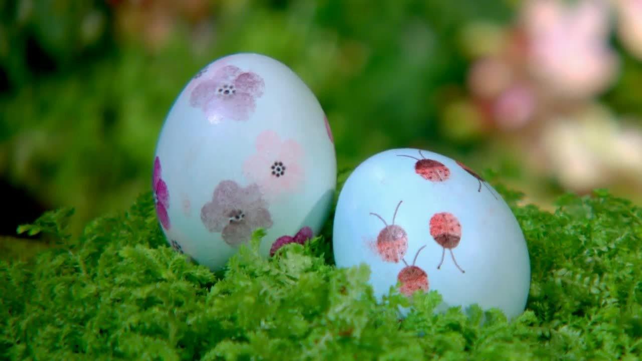 Video Easter Egg Hunt Setup Martha Stewart