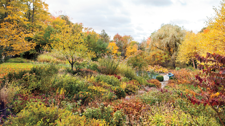 rohdie-garden-0025-md109241.jpg