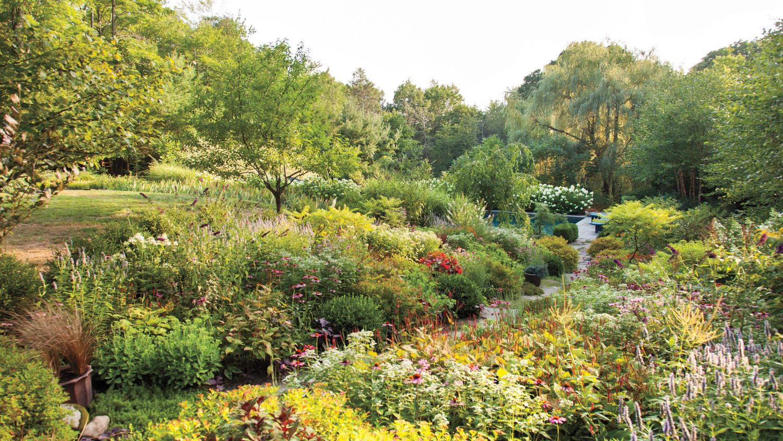 rohdie-garden-0362-md109241.jpg
