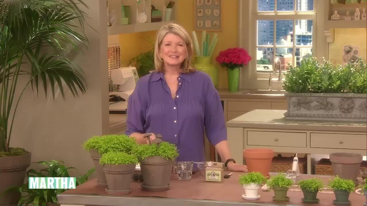 Video Diy Vintage Terra Cotta Pots Martha Stewart