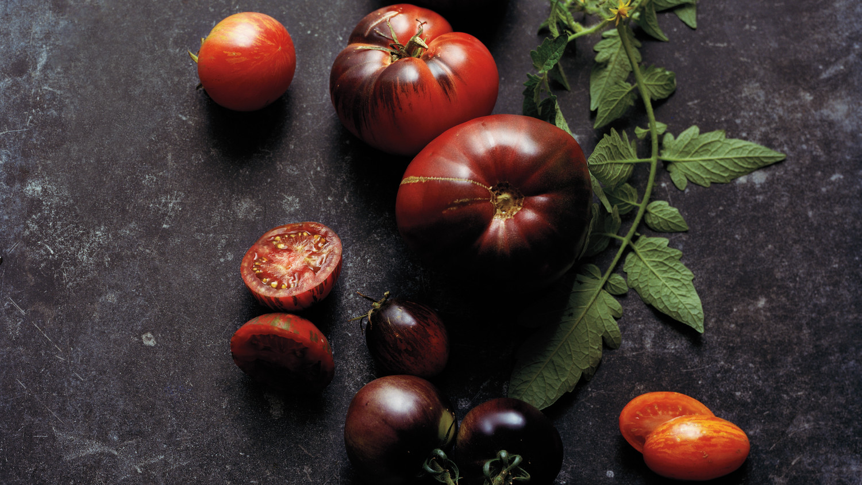 tomato-glossary-23-r-md109341.jpg