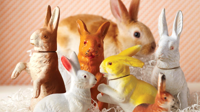 mld106987_0411_bunnies_plaster.jpg