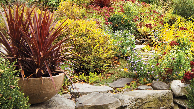fall-rohdie-garden-0110-md109241.jpg