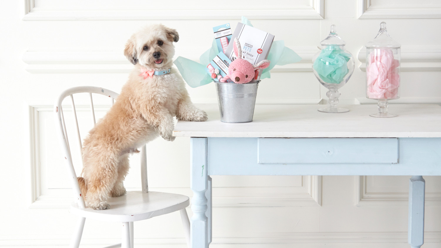 Go Fetch! Host an Easter Egg Hunt for Your Dogs Martha ...