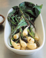 Cooking with Foraged Foods