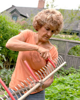 plantingrows3.jpg