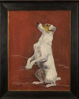Fine Art Pet Portraits