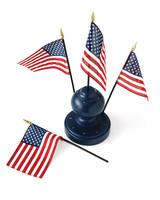 msl_jul06_bbq_flag.jpg
