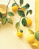 Lemon Recipes
