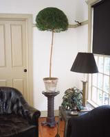 a98914_0901_plantstand.jpg