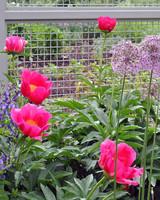 ms-garden-tour-14-0615.jpg