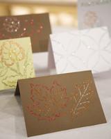 4010_100208_glittercards.jpg