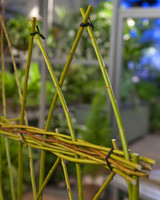 5136_041410_willow_fence.jpg