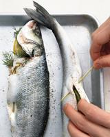 grilled-fish-3-mld110112.jpg
