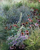 ogden-garden-177-d111601.jpg